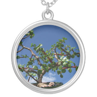 Bonsai portulacaria afra tree 1 silver plated necklace