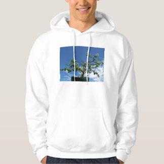Bonsai portulacaria afra tree 2 hoodie