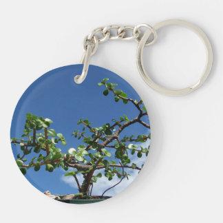 Bonsai portulacaria afra tree 2 keychain