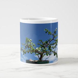 Bonsai portulacaria afra tree 2 large coffee mug