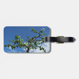 Bonsai portulacaria afra tree 2 luggage tag
