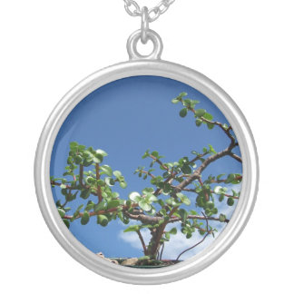 Bonsai portulacaria afra tree 2 silver plated necklace