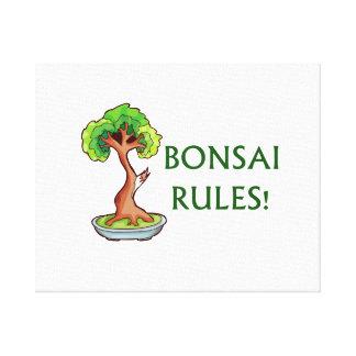 Bonsai Rules Shari Tree Graphic and text design Canvas Print