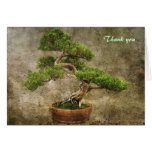 Bonsai Thank you Stationery Note Card