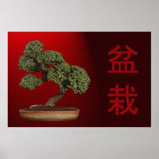 Bonsai Tree 36 x 24 Poster