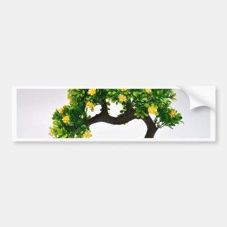 Bonsai tree bumper sticker