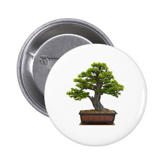 bonsai tree button