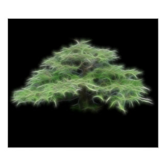 Bonsai Tree Green Plant Poster