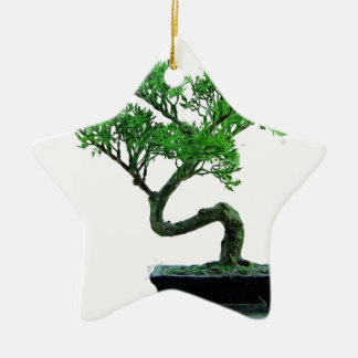 bonsai-tree Painting Ceramic Ornament