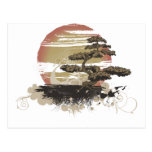 Bonsai Tree Postcards