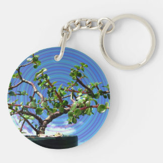 Bonsai tree with spiral effect overlay Double-Sided round acrylic keychain