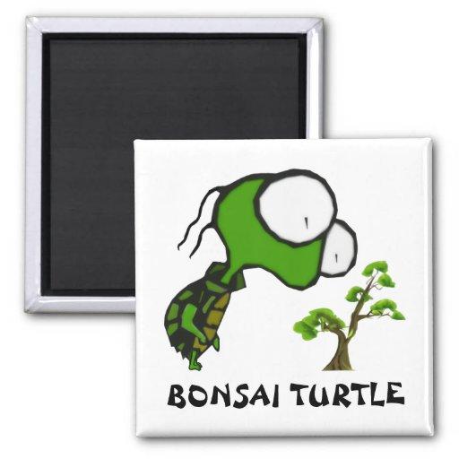 Bonsai Turtle Magnet