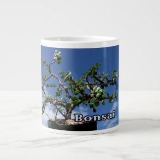 Bonsai w text photograph portulacaria afra tree 1. giant coffee mug