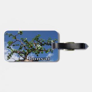 Bonsai w text photograph portulacaria afra tree 1. luggage tag