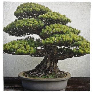 Bonsais de White Pine del japonés Servilleta De Papel