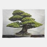 Bonsais de White Pine del japonés Toalla