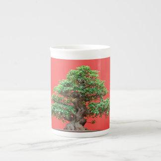 Bonsais del Ficus Taza De Porcelana