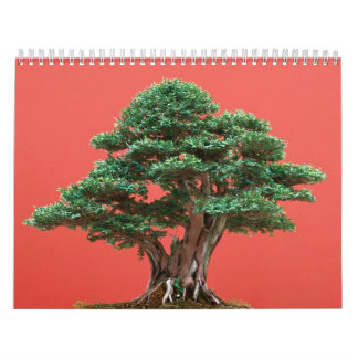 Bonsais del tejo calendario