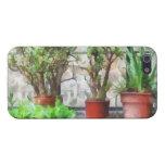 Bonsais en invernadero iPhone 5 carcasas