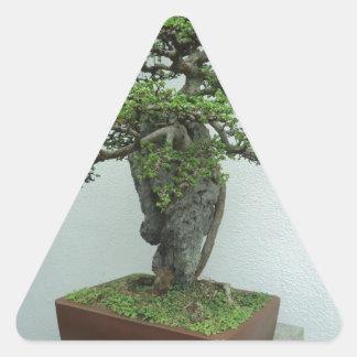 bonsais pegatina triangular
