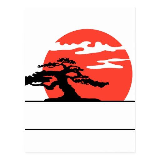 Bonsais verticales contra el sol con la caja para  postal