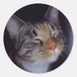 Bontzo los pegatinas del gato del amor