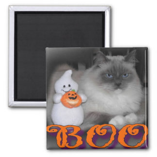 Boo 2 Inch Square Magnet