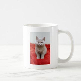 Boo Boo The Kitty Coffee Mug
