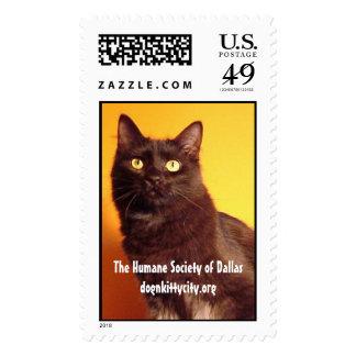 Boo - dognkittycity.org Stamp
