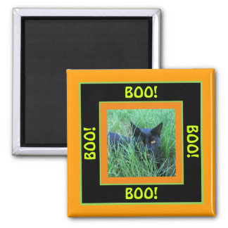 Boo Halloween Cat 2 Inch Square Magnet
