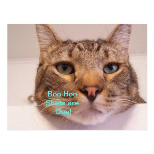 boo hoo Shots! Post Cards