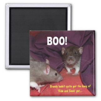 BOO! 'rats talking' magnet