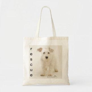 Boo, shelter dog on canvas shopping bag