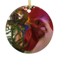 Boo the Roo Circle Christmas Ornament