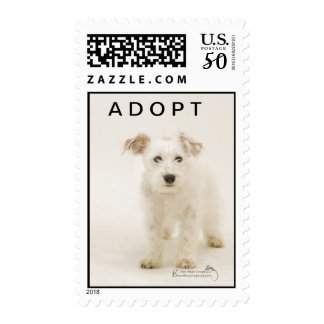 Boo, white terrier dog postage stamp