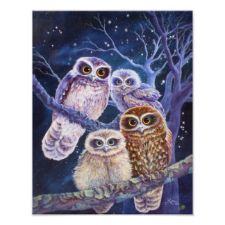 Boobook Owl Family. Poster