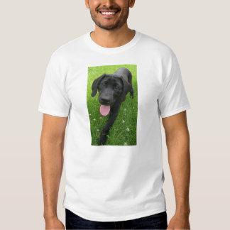Bood T-Shirt