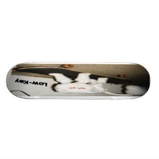 Boogie Board Skate Board Deck