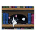 Book Love | Cat Sleeping on Bookcase Note Card