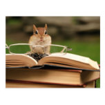 Book loving chipmunk post cards