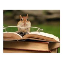 Book loving chipmunk postcard
