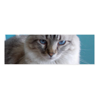 Book Mark with Cats Business Card Template