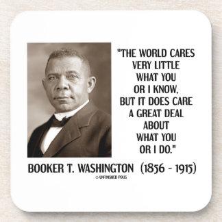 Booker T. Washington World Cares Very Little Great Coaster