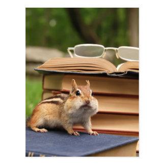 Bookloving Chipmunk Postcards