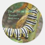 Bookplate del ratón de biblioteca pegatina redonda