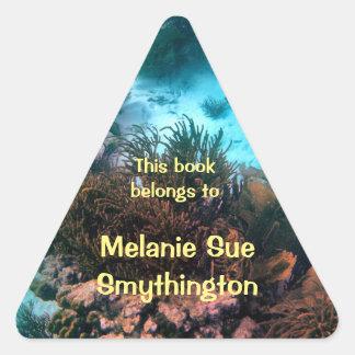 Bookplate personalizado filón de Bonairean Pegatina Triangular