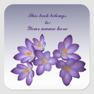 Bookplate púrpura del azafrán calcomania cuadrada personalizada