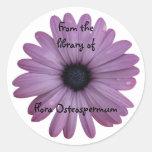 Bookplate púrpura del personalizado de Osteospermu Etiqueta
