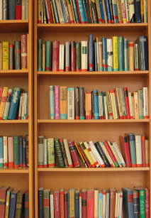 Bookshelf Background IPad Mini Cover