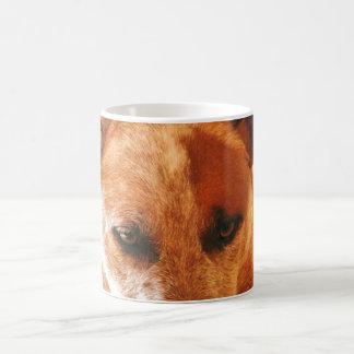 Boomer Close Up Coffee Mug